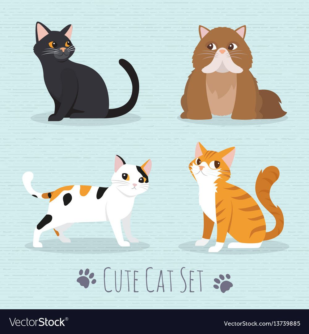 Cute Cats Breed Vector Image On With Images Cat Vector Cute