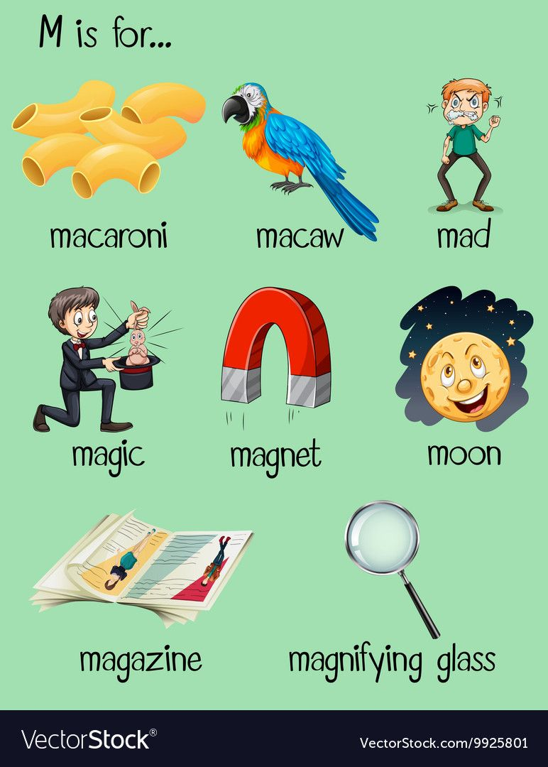 Different words for letter M vector image on Different
