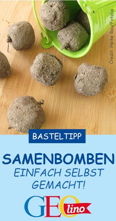 Seedbombs: So macht ihr Samenbomben selbst