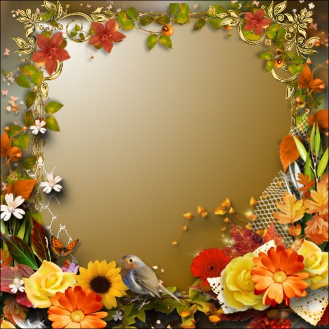 Frame Wallpaper Backgrounds Yellow