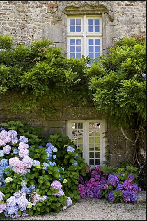 Green Room Beautiful Gardens Hydrangea Garden Dream Garden