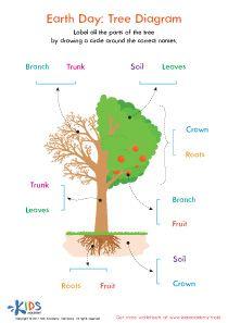 Parts of a Tree - Plant Worksheet #kids #preschool # ...