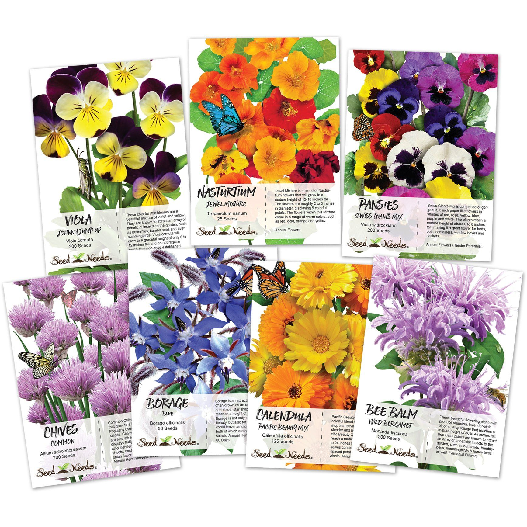 Edible wildflower seed collection wildflower seeds