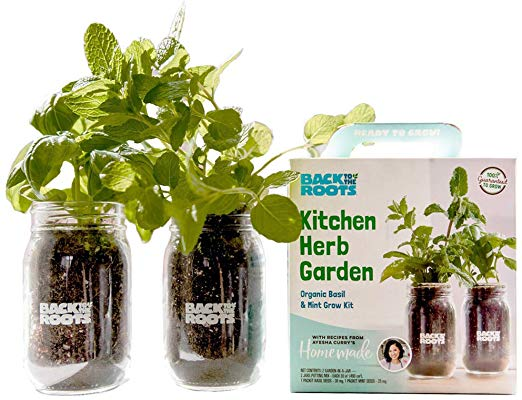 Organic Indoor Herb Garden Kit by Back to the