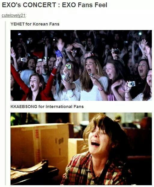 So true! Exo please come to France!  I will be your guide!