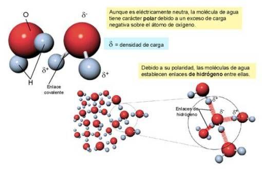 Entradas sobre TEMA 9 El enlace químico en Blog de Mila (IES Villa de  Vícar) | Química, Enlace químico, Tipos de enlaces quimicos