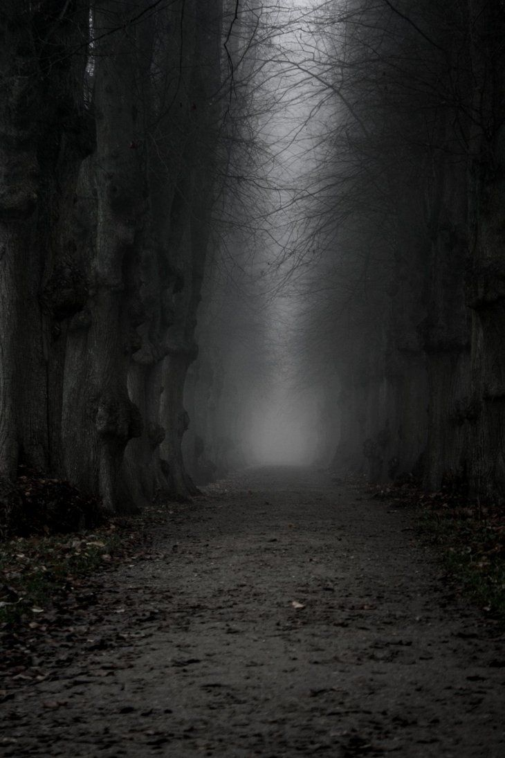 The dark, ominous path!   The World In Black & White ...