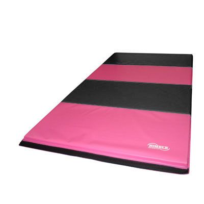 Excellent For Beginning And Advanced Gymnastics
