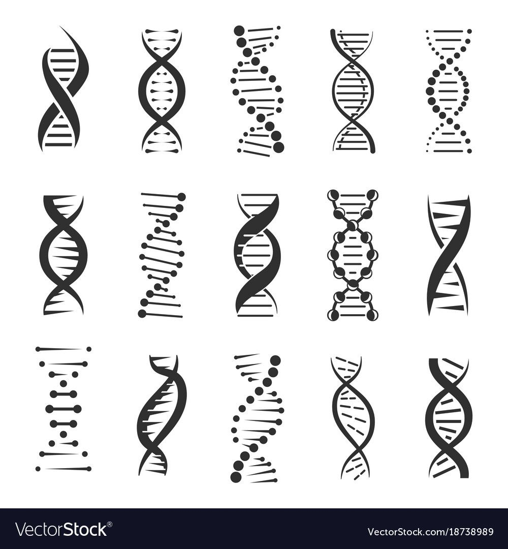 Double Dna Helix Icons Royalty Free Vector Image Spon Helix Icons Double Dna Ad Dna Tattoo Biology Tattoo Dna Helix