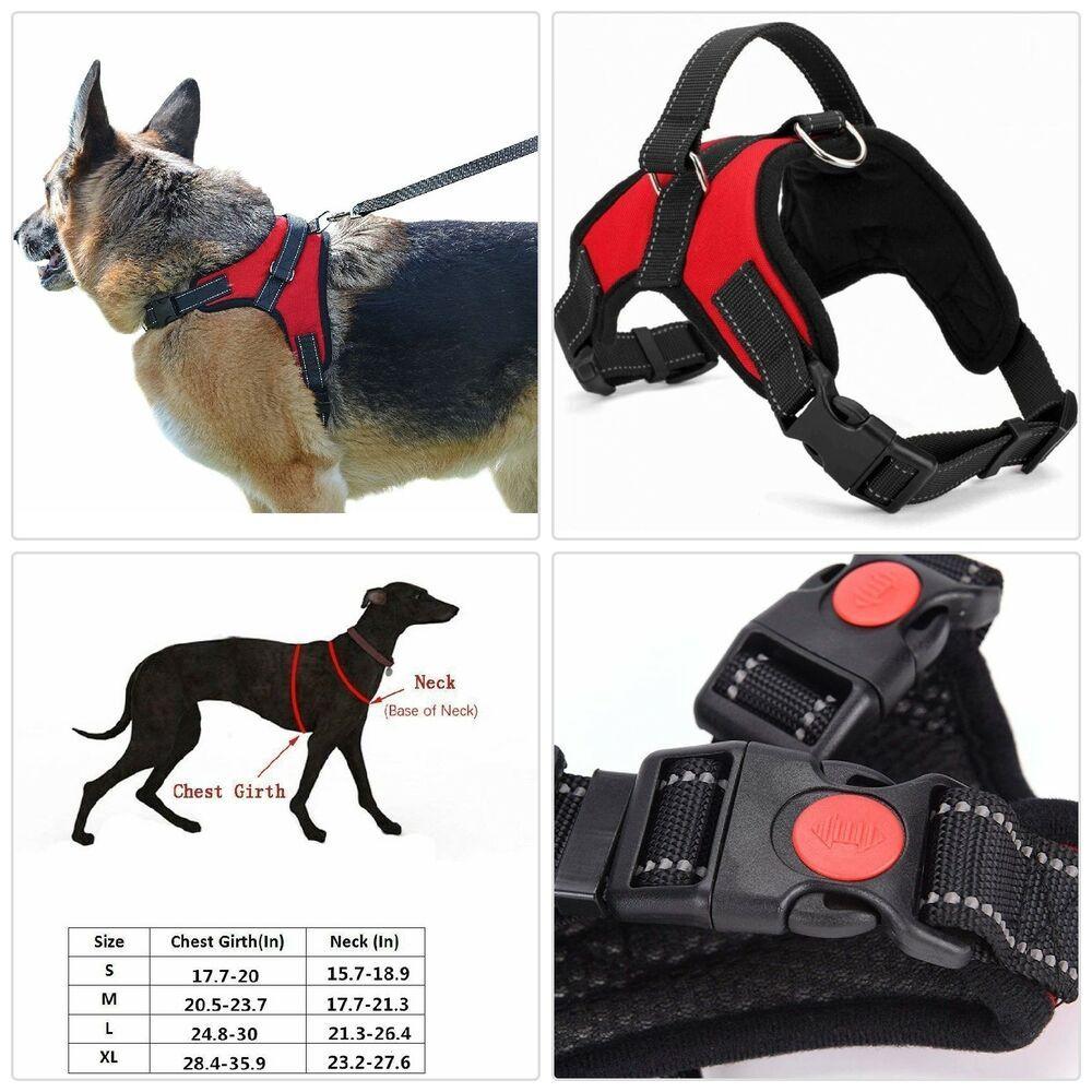 Adjustable Pet Vest Harness Dog Soft Walk Out Training Strap Large