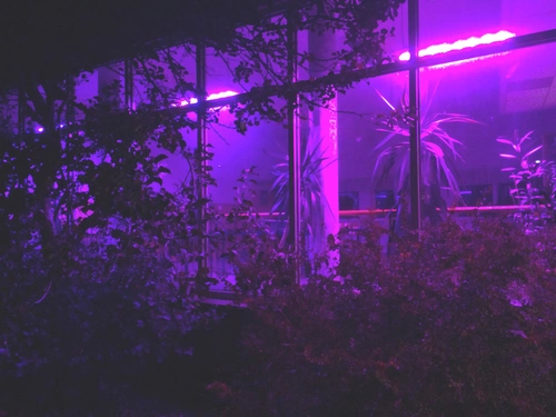 purple aries aesthetic // ever since I left the city you
