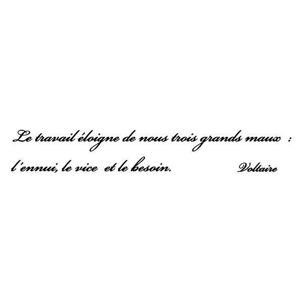 Voltaire Candide Citations Francaises Citation