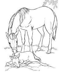 Imagini Pentru Desene Cu Cai Farm Animal Coloring Pages Horse Coloring Pages Animal Coloring Pages