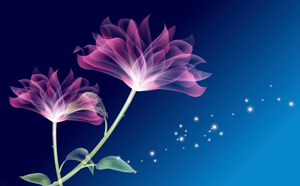 Transparent Flowers Hd Wallpaper Purple Flower Pictures Purple Flowers Wallpaper Transparent Flowers