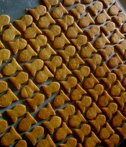 Make Your Own 4 Ingredient Cheddar Cheese Crackers