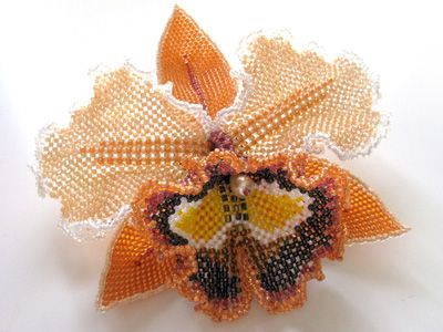 Orange and brown orchid