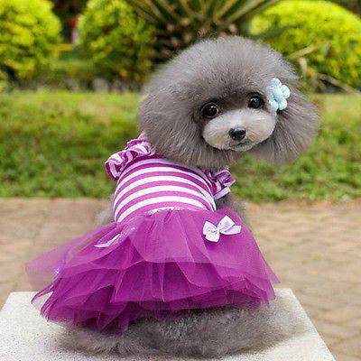 Details About Dog Dress Skirt Tutu Lace Pet Puppy Princess