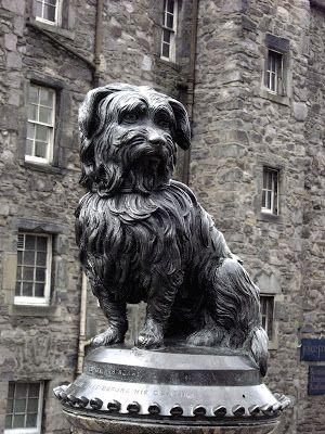 Grey-Friars Bobby Story | Bonnie Scotland | Dog stories, Funny dog