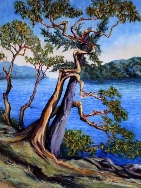 Southern Gulf Islands Afternoon 48 X 36 Inch Oil On Canvas