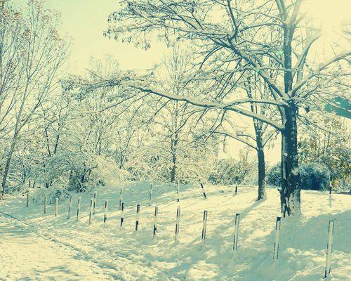 Winter Photography: A White Escape - Hongkiat