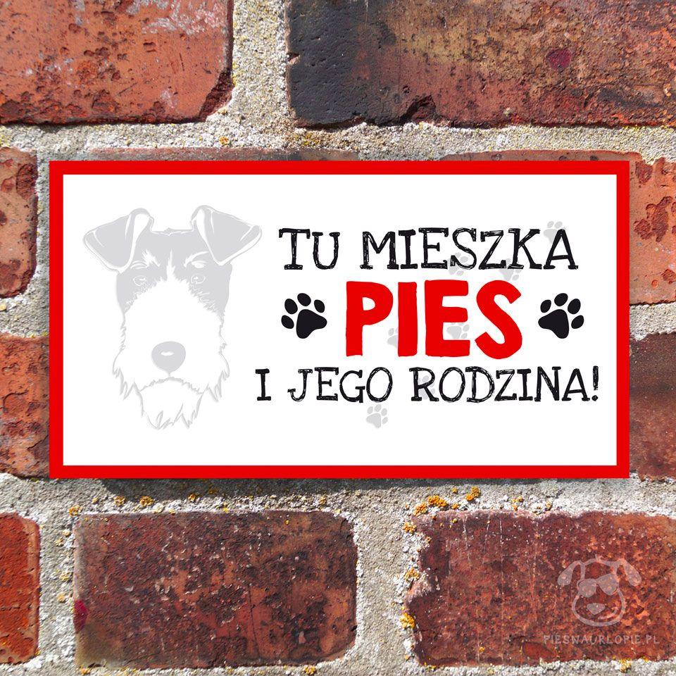 Tabliczka Z Psem Rasowym Na Drzwi Na Brame Na Furtke Foksterier Dla Psiarzy In 2020 West Highland Terrier Shiba Inu Chow Chow
