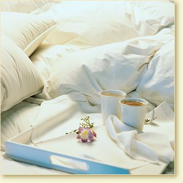Pacific Coast Down Comforters & Feather Beds