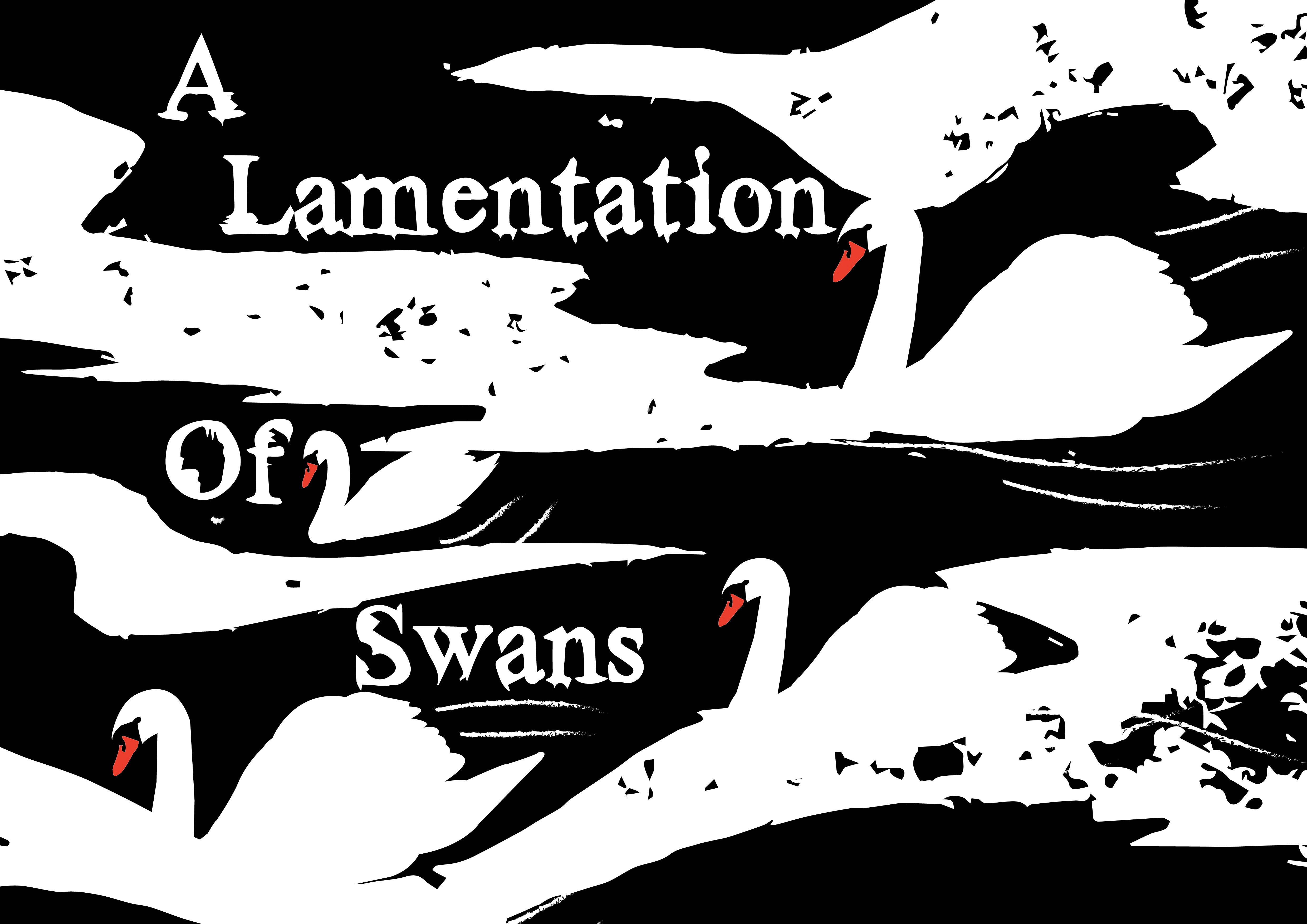 A collective noun illustration of swans. Collective