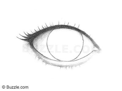 Line Drawing Step By Step : How to draw lively human eyes an easy step by explanation