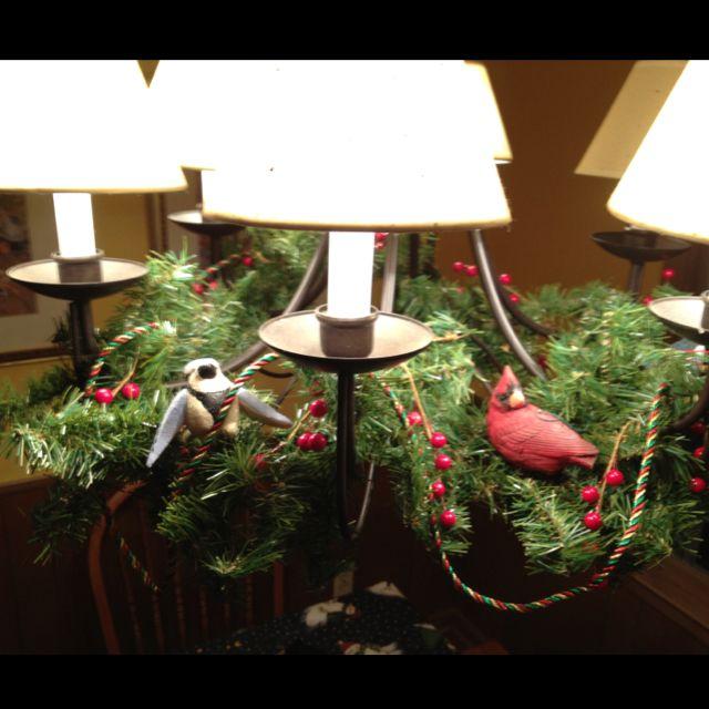 Feathered friends...cardinal, bluejay, snow bird & chickadee ornaments on the kitchen light fixture.