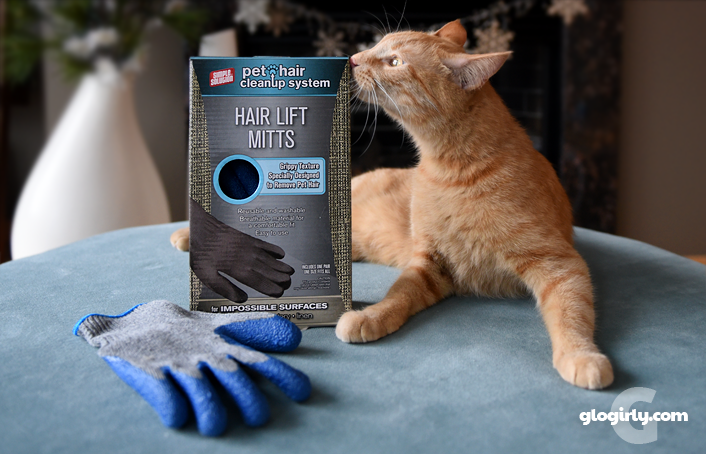 GLOGIRLY: Spiffing Up for Christmas with Simple Solution's Pet Hair CleanUp System: GIVEAWAY!