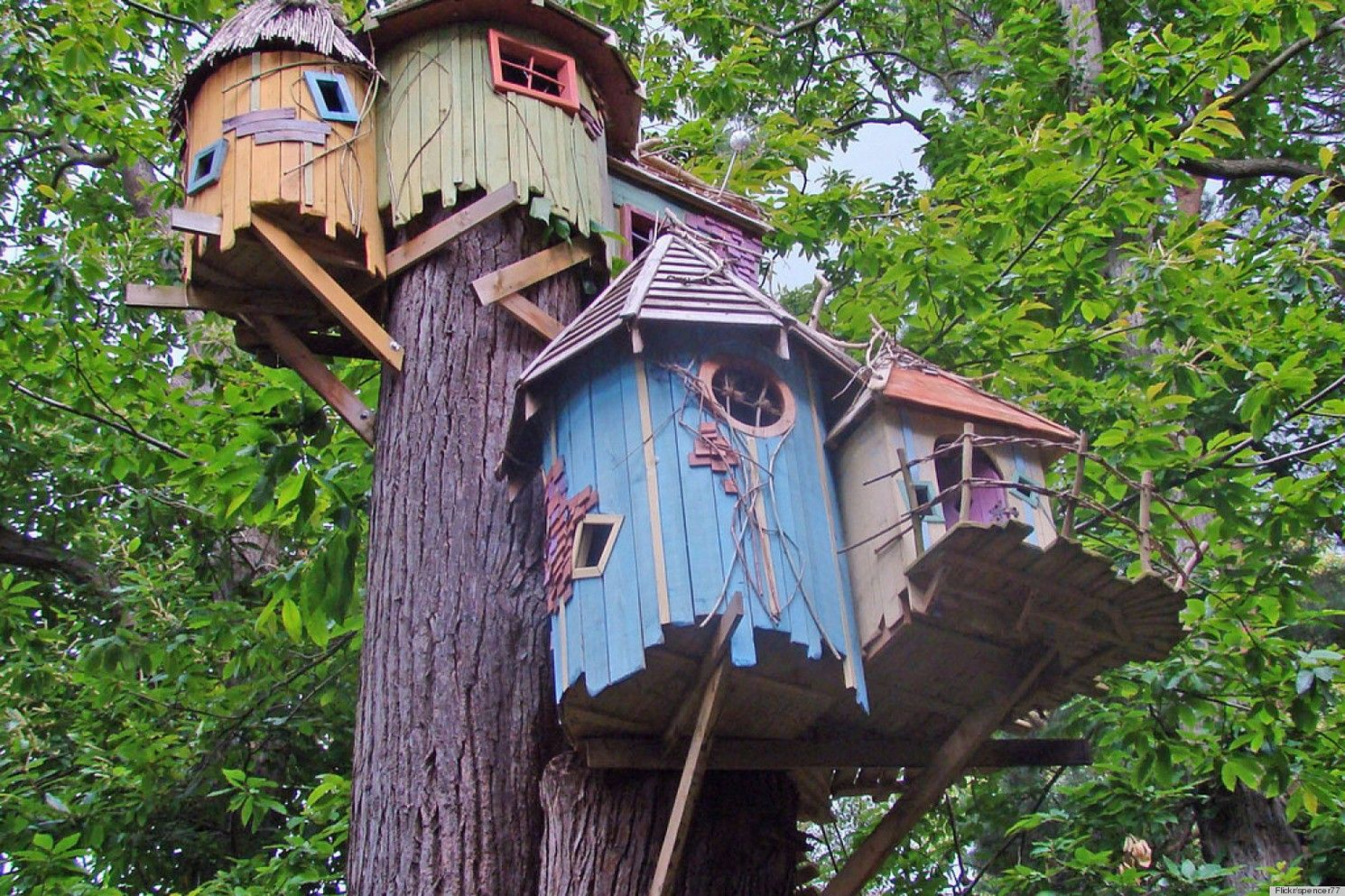 Cool Kids Tree Houses Designs Be The Coolest Kids On The Block
