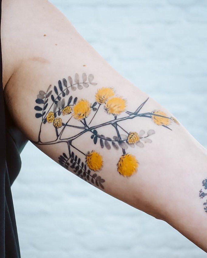 Julia Toebel On Instagram Some Beautiful Blossoms From The Acacia Tree For Franzi Flower Nature Acacia Akazie Ber In 2020 Tattoos Acacia Tree Geometric Tattoo