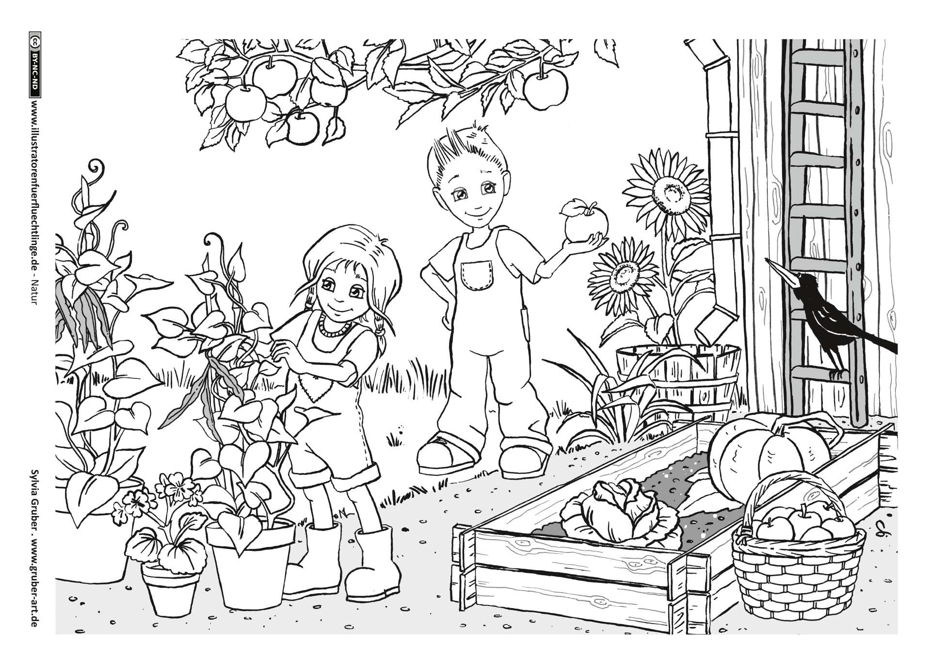 Garten Herbst Mandala ausmalen Ausmalbilder Illustrator