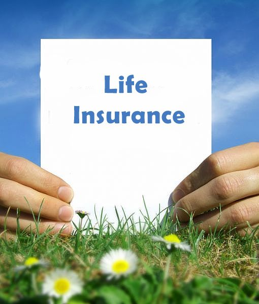 Term Life Insurance Quote Magnificent You Should Be Very Careful While Choosing A Life Insurance Policy . 2017