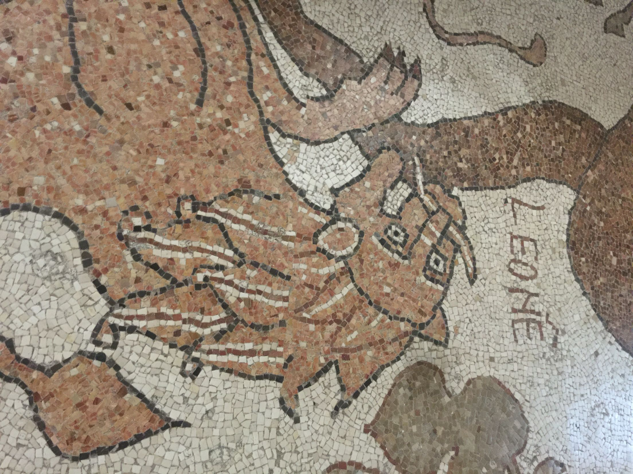 Ortranto Cathedral mosaic