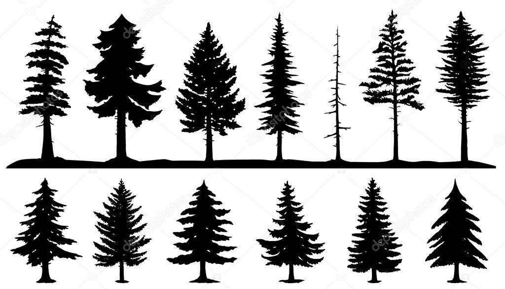 Colección De Silueta De Lobo: Descargue El Vector De Stock Siluetas De árboles De