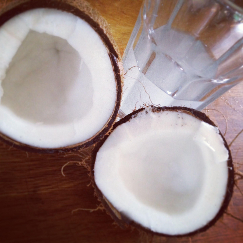 Kokosnød