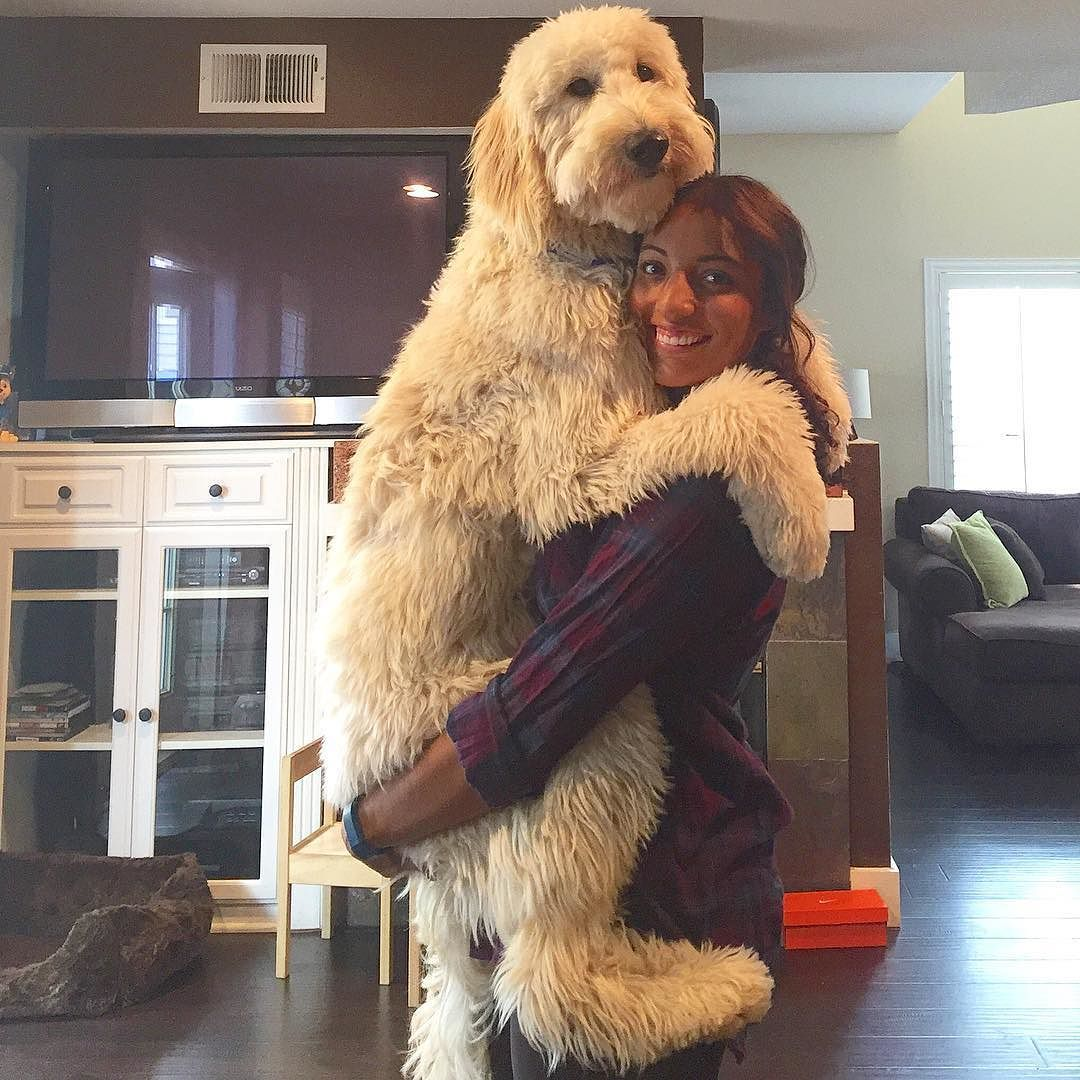 I M Pretty Big But Mom Doesn T Mind Holding Me By Forresthedood