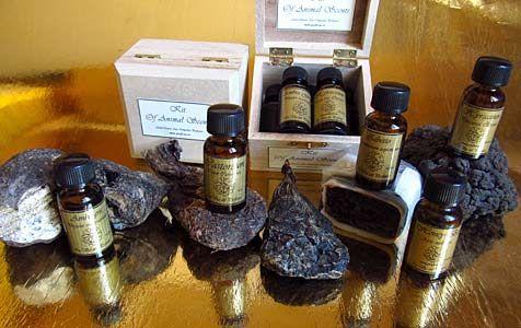 Kit Of Animal Scents Natural Perfume Perfumery Perfume Making
