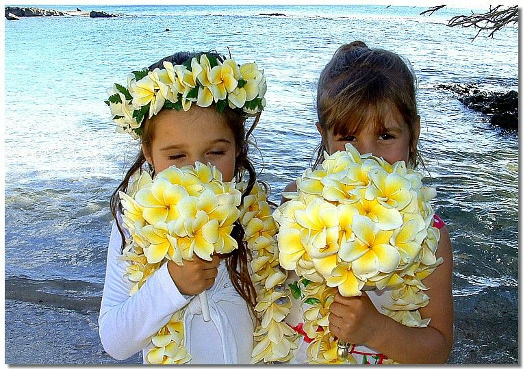 Beautiful Flower Girls Holding Plumeria Bouquets Wearing Plumeria Leis Crowns White Orchids Hawaiian Flowers Plumeria