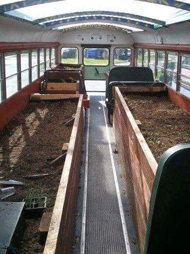 Photo of Scuolabus come serra.
