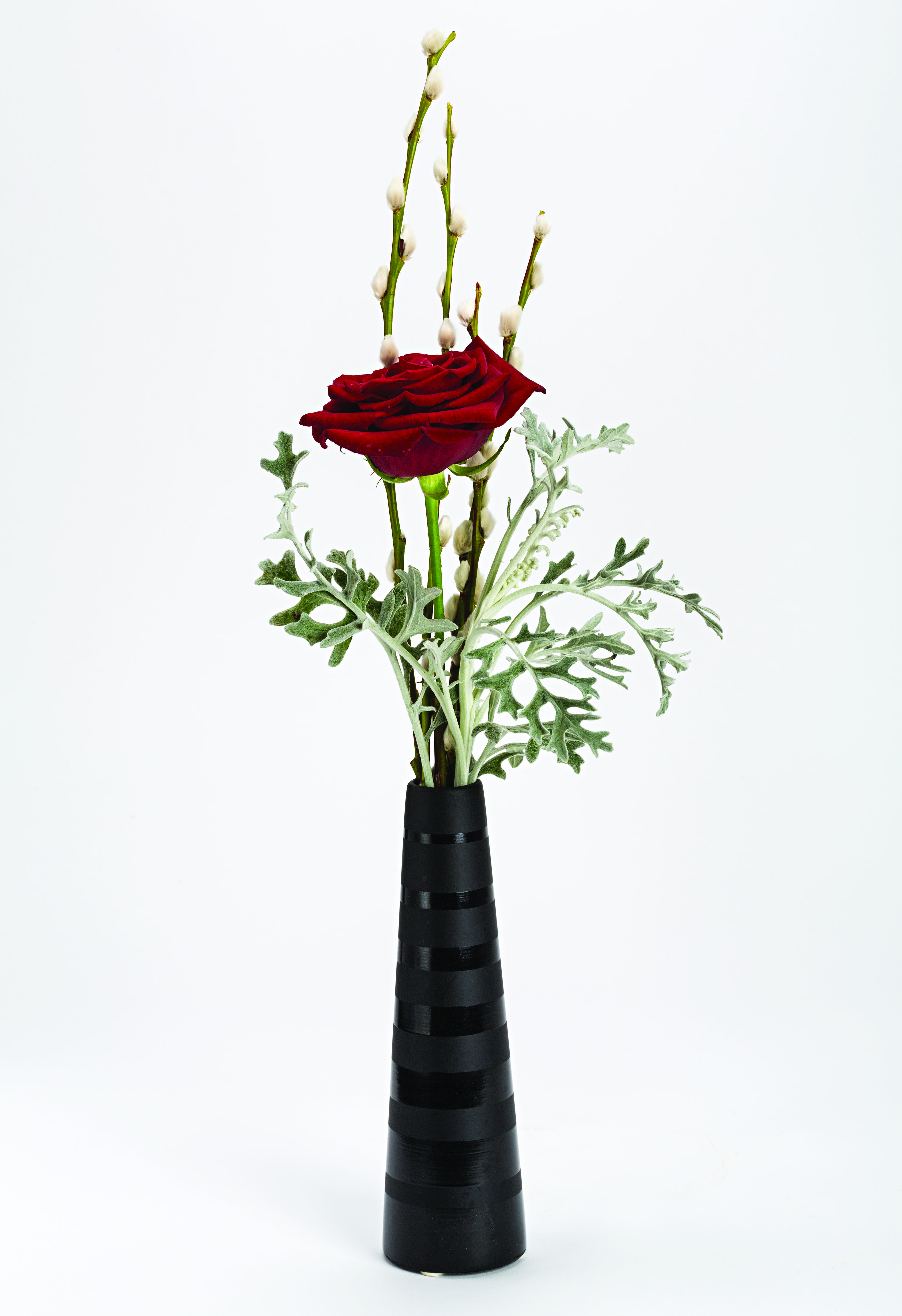 Single red rose with pussy willow in a black vase valentines day single red rose with pussy willow in a black vase valentines day flowers florist reviewsmspy