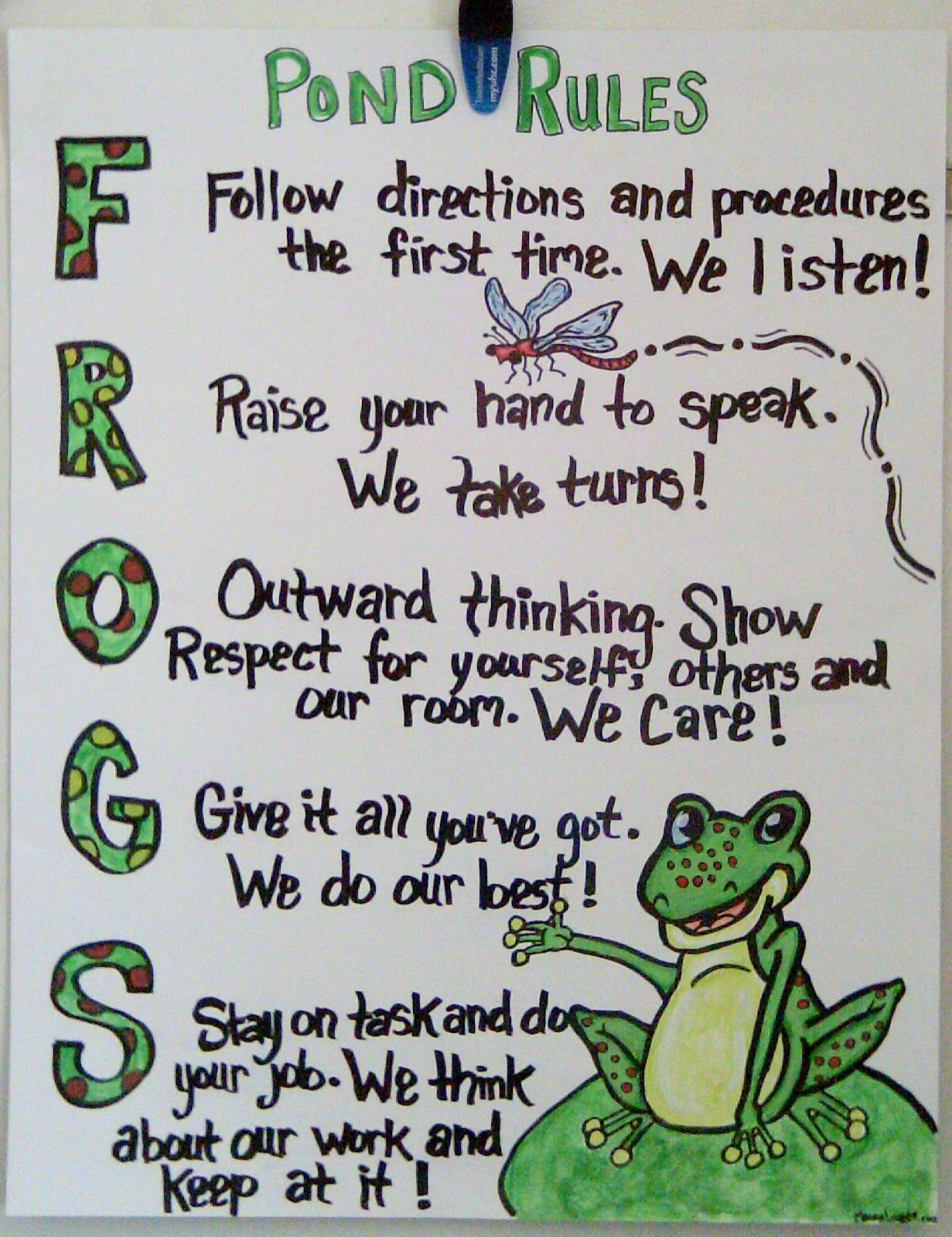 Mrs. Fails\' Frogs   Frog ideas for classroom   Pinterest