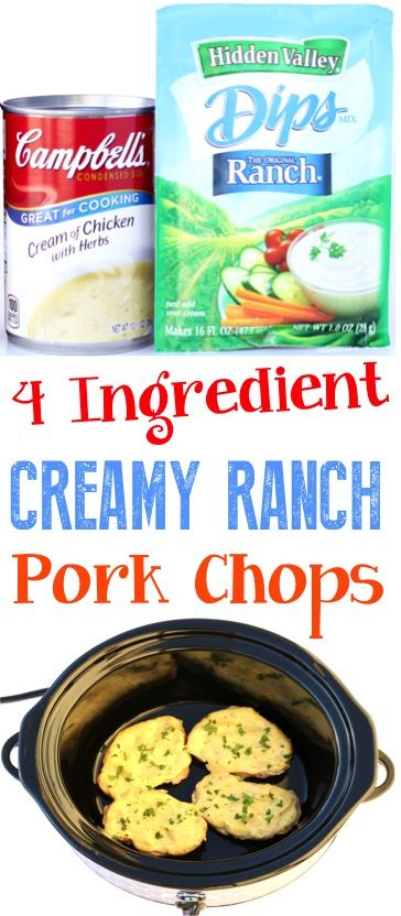 Crockpot Ranch Pork Chops Recipe! (4 Ingredients) (DIY Thrill) images