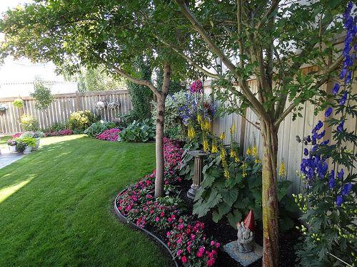 Dsc00557 Landscaping Along Fence Backyard Flowers Fence
