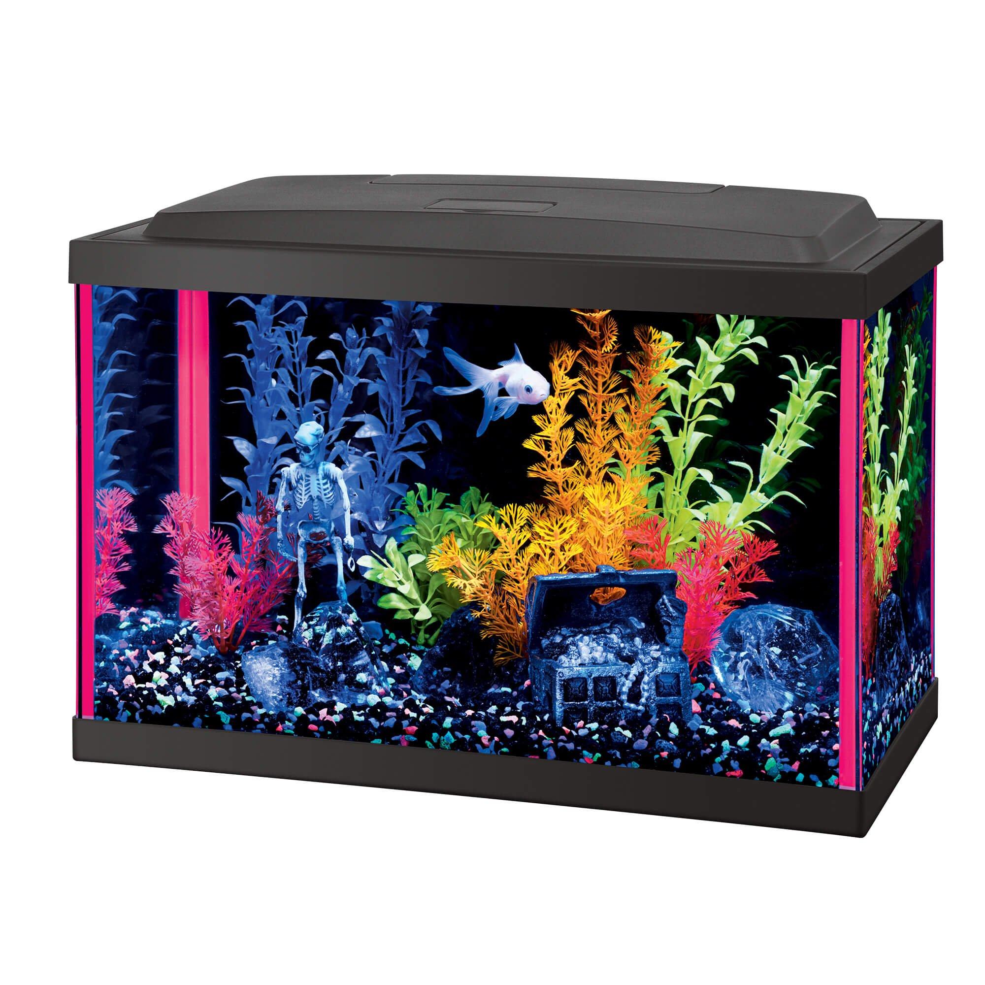 Aqueon Led 5 5 Gallon Pink Aquarium Kit Petco Aquarium Kit Glow Fish Aquarium Fish