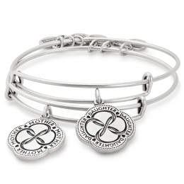Mother Daughter Bracelets From Alex Ani Affiliate Link