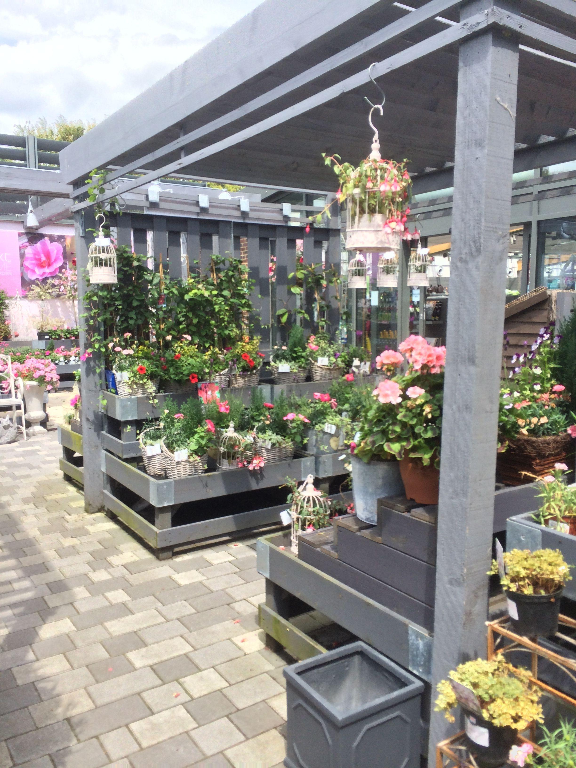Next - Home & Garden - Home - Decorating Centre - Garden ...