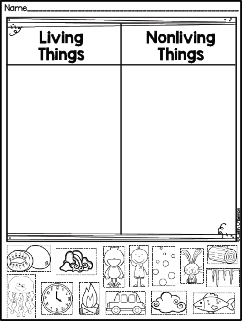 worksheet Sorting Worksheet freebie living and non things sort teaching ideas sort