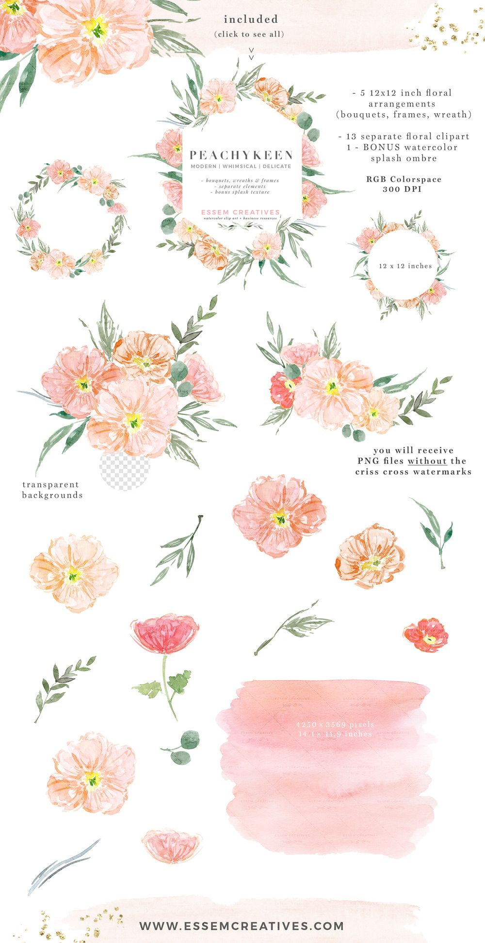Blush Pink Watercolor Flowers Clipart Poppies Blush And Sage